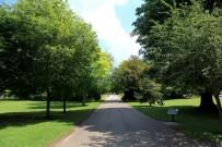 bury park